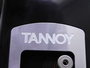 _TANNOY_Definition_DC8T_m3sp3__6.jpg