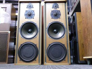 _Celestion_Ditton66_m0s863_2.jpg