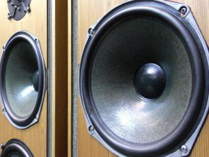 _Celestion_Ditton66_m0s863_4.jpg